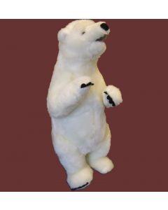 Staande ijsbeer